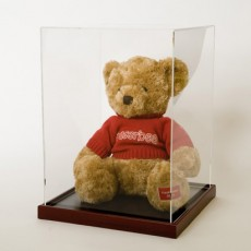 Teddy Bear Display Case