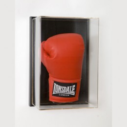 Wall Mount Boxing Display Case