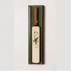 UV Mini Cricket Bat Display Case