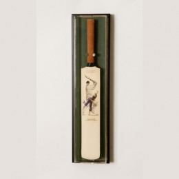 UV Mini Cricket Bat Display Case